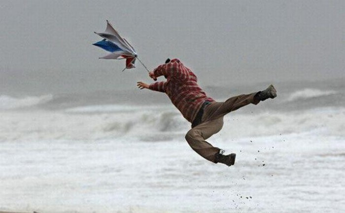 Windy.jpg (30 KB)