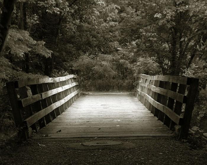 bridge 700x560 We are