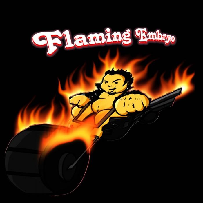 FLAMIN_E2.jpg (99 KB)