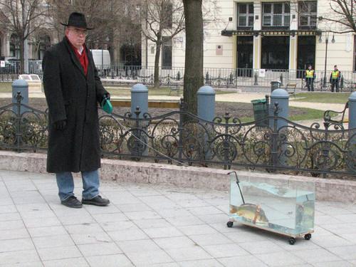 fish.jpg (91 KB)