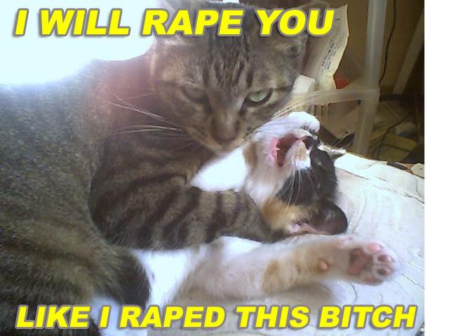 rapecat.jpg (53 KB)