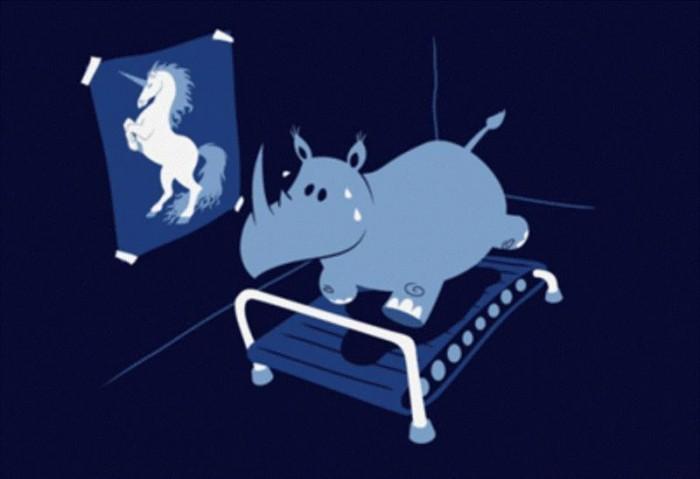 rhino.JPG (31 KB)
