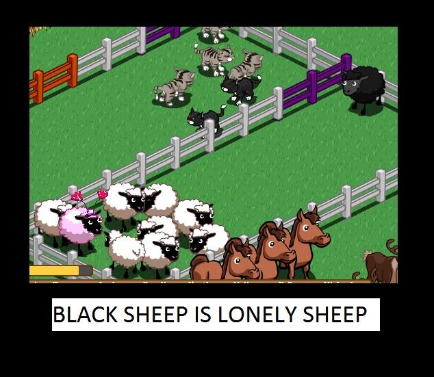 blacksheep.jpg (128 KB)