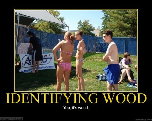 Identifying Wood Motivational Posters wtf NeSFW Humor
