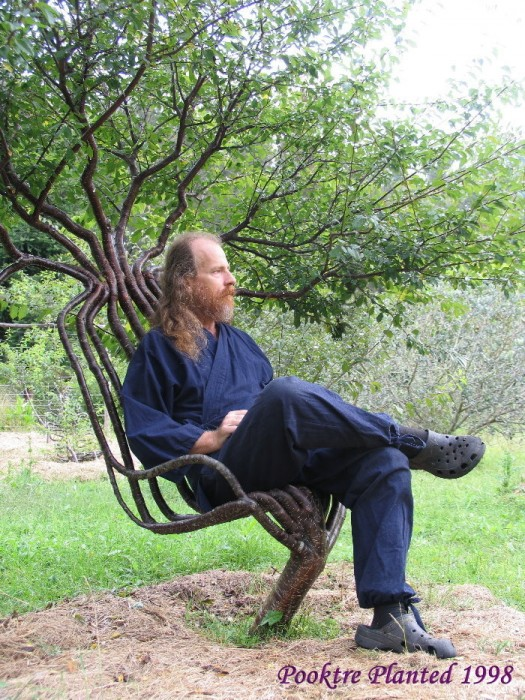 pete in garden chair 01 525x700 Growing trees wtf Nature Art