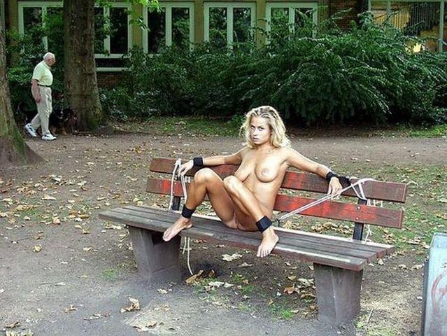 bench.jpg (87 KB)