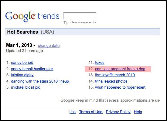 google_search_.jpg (47 KB)