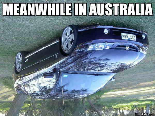 meanwhile-in-australia.jpg (50 KB)