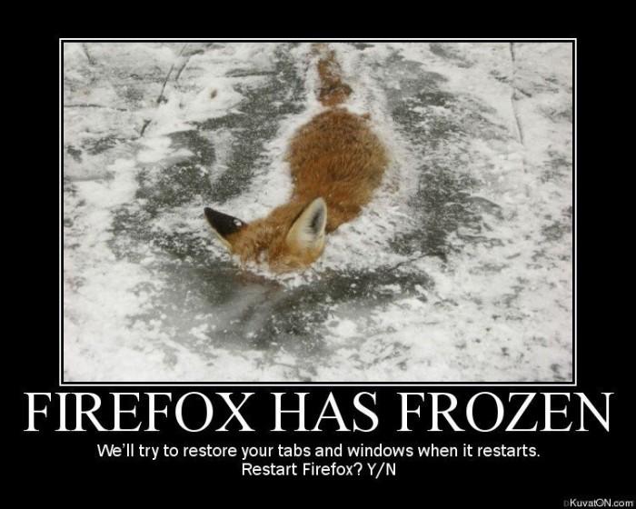 fox.jpg (92 KB)