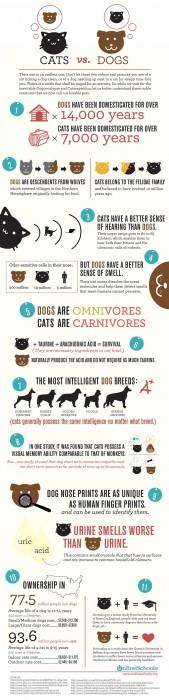 catsversusdogsbig01.jpg (561 KB)