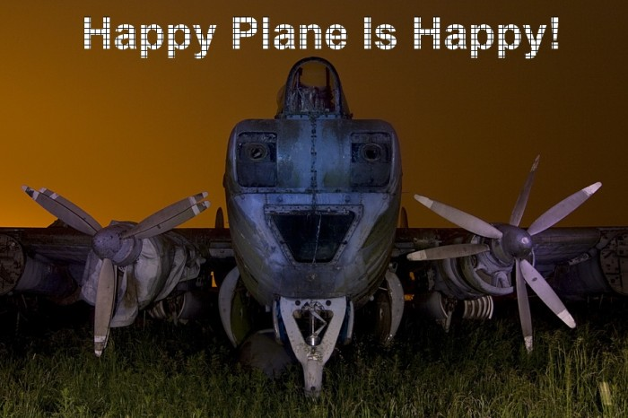 Happy Plane Is Happy.jpg (187 KB)