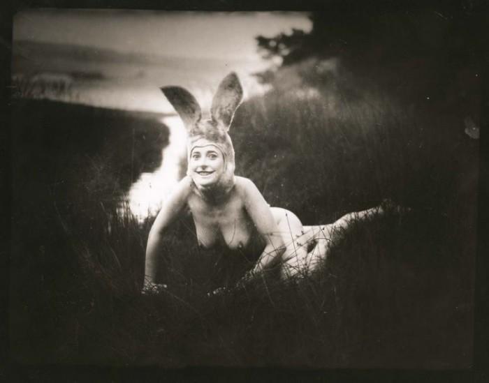 bunny.jpg (36 KB)