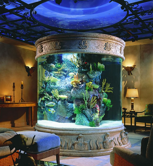 Ornate aquarium