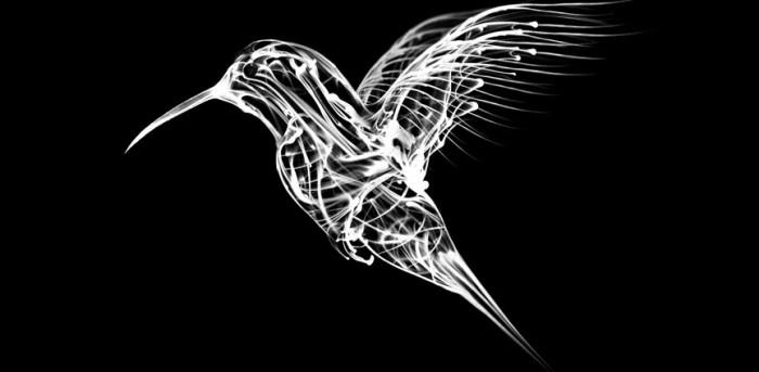 sean-freeman-thereis-humming-bird-1.jpg (39 KB)