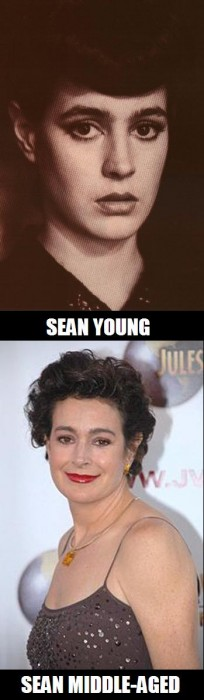 sean young sean middleaged jpg.JPG (48 KB)