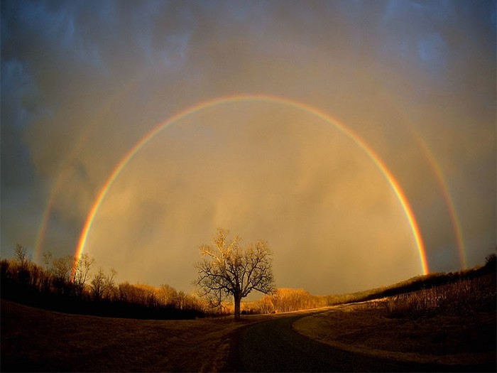 double-rainbow1.jpg (56 KB)