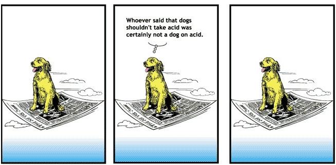 acid.jpg (125 KB)