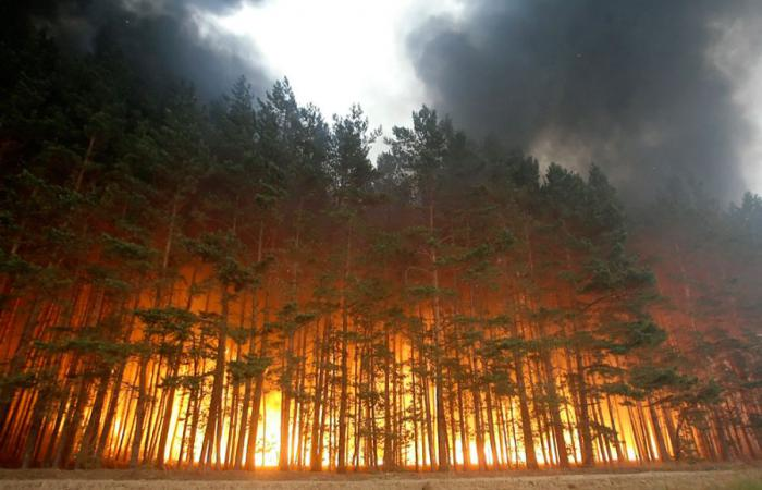 fire1 Russia on Fire wtf Nature