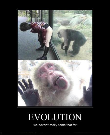 demotivational-posters-evolution.jpg (94 KB)