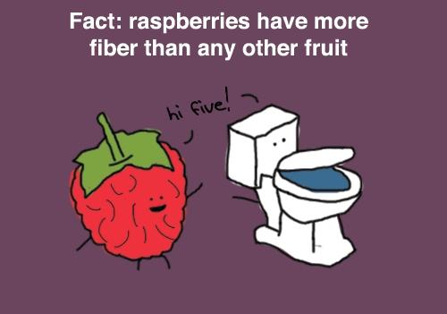 raspberry-fiber1.jpg (53 KB)