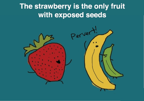 strawberry-seeds.jpg (62 KB)