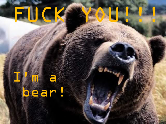 Fuck You Bear.jpg (94 KB)