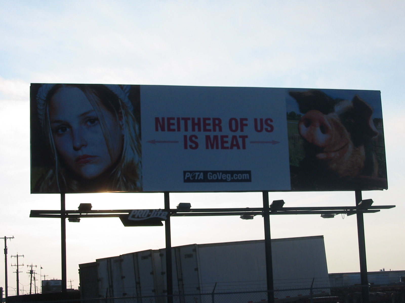 PETA Billboard 2 wtf Humor Advertisements