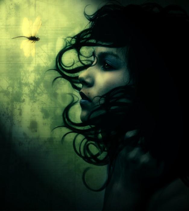dragonfly.jpg (505 KB)