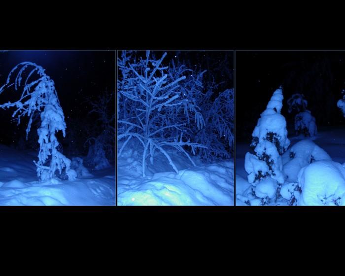 winter-christmas-wallpapers-67.jpg (768 KB)