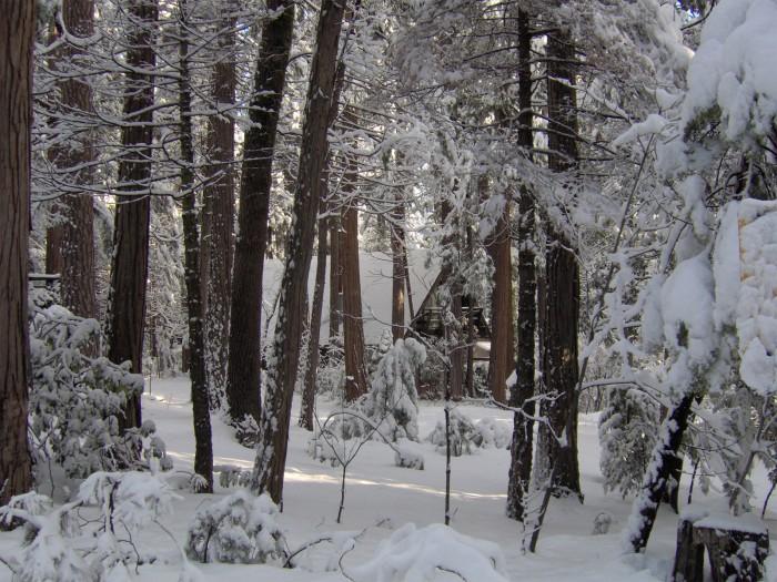 winter_house_2006.jpg (1010 KB)