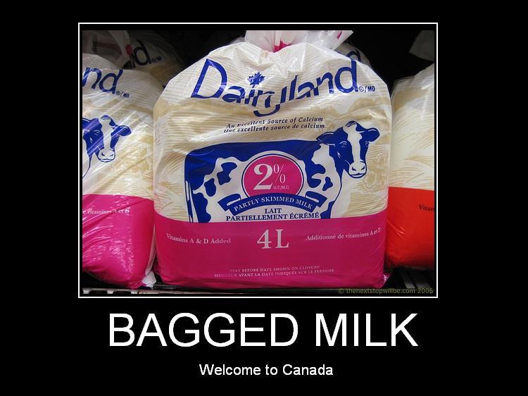 bagged-milk.jpg