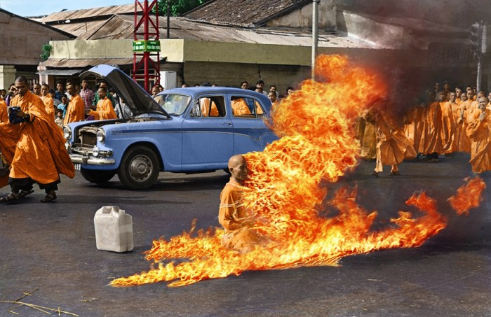 burningmonkpaint.jpg (572 KB)