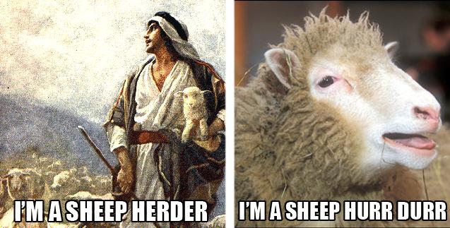 herder Hurrr