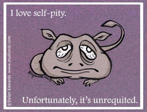 dylan-edwards-self-pity.jpg (54 KB)