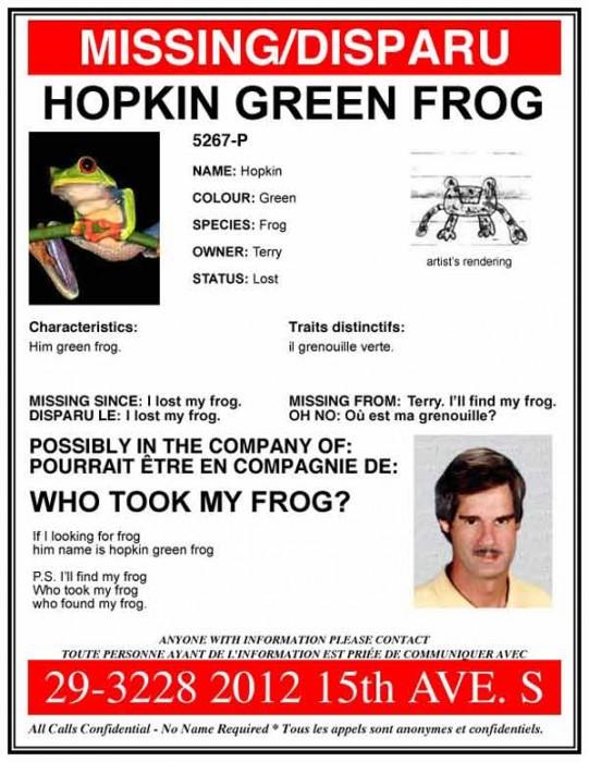 frog.jpg (52 KB)