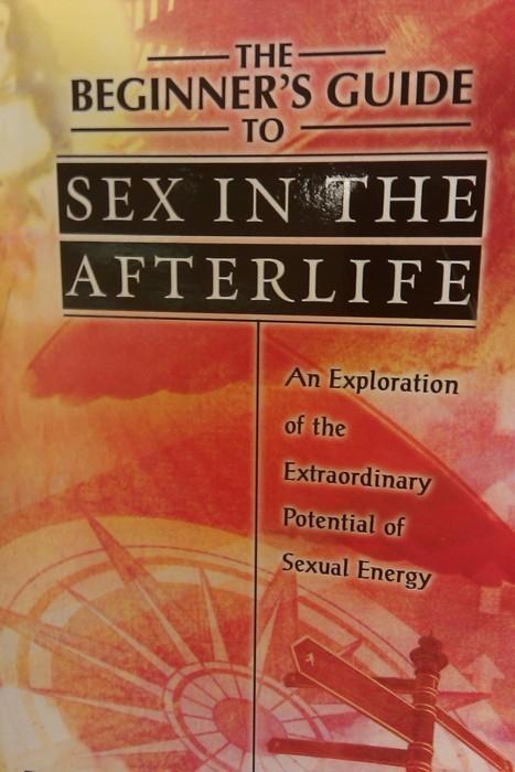 sexintheafterlife.jpg (47 KB)