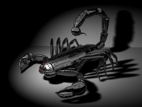 Black_Metal_Scorpion.jpg (92 KB)