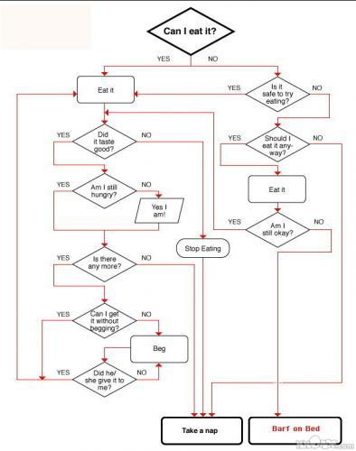 dog flow chart.jpg (111 KB)