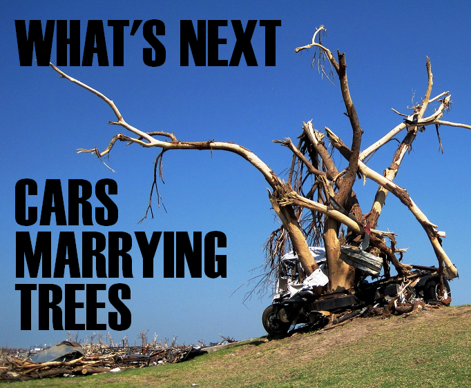 cars_marrying_trees.PNG (740 KB)