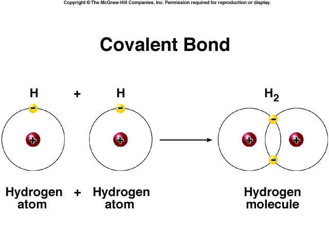 20 examples of covalent compound Naming ionic compounds practice worksheet  20 silver bromide _____ lots of ionic naming practice  mixed ionic/covalent compound naming.