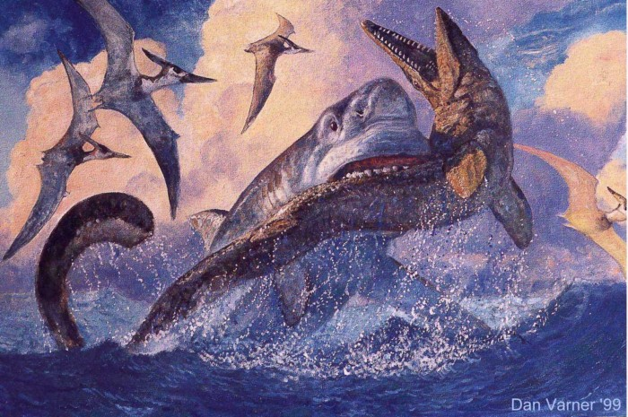 o242193 700x465 shark attack Wallpaper Dinosaurs Art