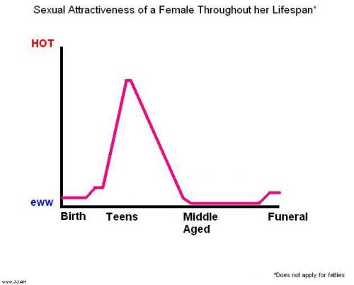 FemaleAttractiveness.JPG (21 KB)