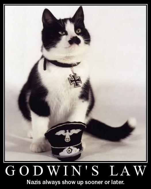 godwin-cat-4e5ea5d-intro.png (214 KB)