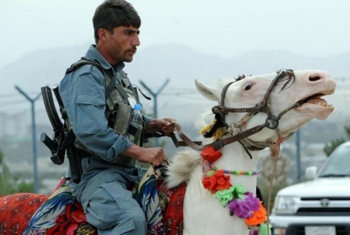 apm 700x471 Afghan Police