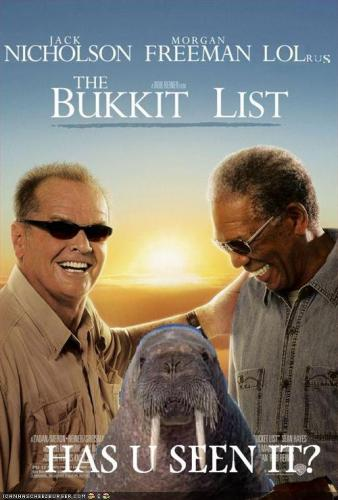 bucket.thumbnail LOLrus Bucket List wtf Quotes Movies Humor Cute As Hell Animals