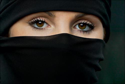 the veil.jpg (119 KB)