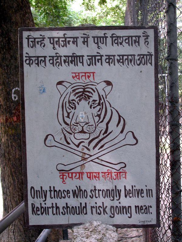 tiger_rebirth-warning.jpg