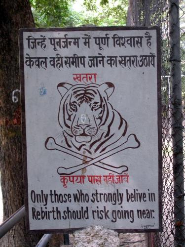 tiger_rebirth-warning.jpg (130 KB)