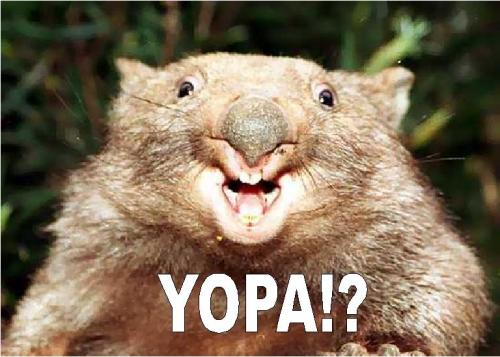 YOPA!!! wtf Nature Humor Cute As Hell Animals