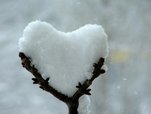 snow heart.thumbnail Snow Heart wtf Nature